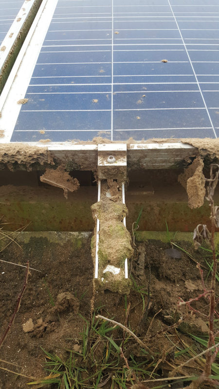 solar panel in need of maintenance