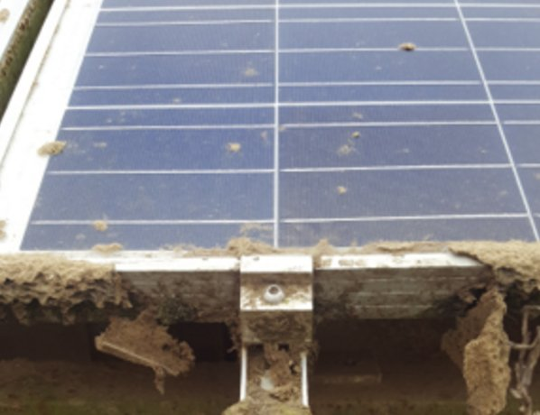 THE IMPORTANCE OF SOLAR PANEL SERVICE