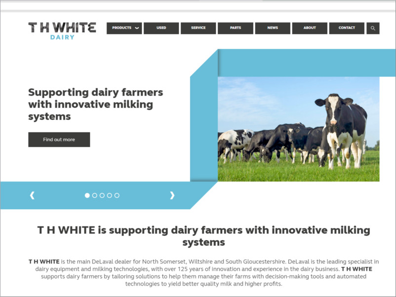 th white dairy