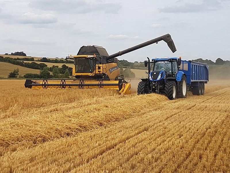 Harvest H
