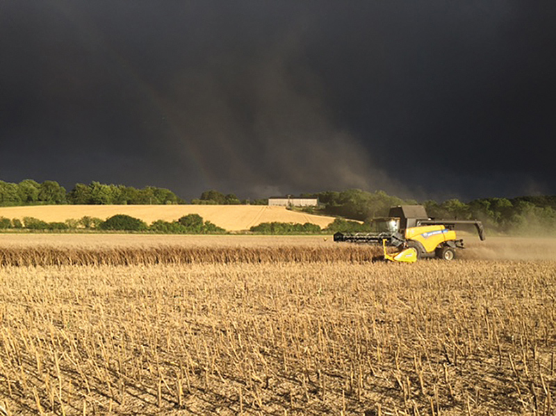 HARVEST PHOTO WINNER