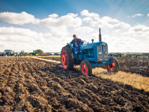 avebury ford ploughing fields