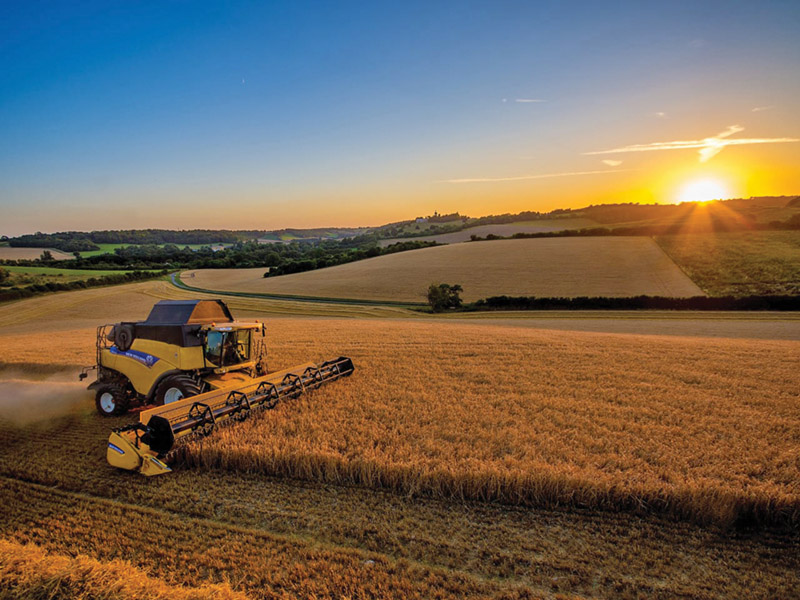 Enter our Harvest Photography Competition