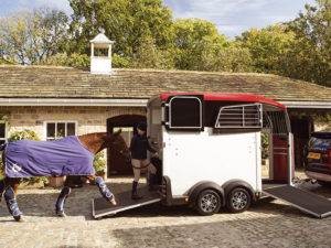 Horse being walked into a horsebox