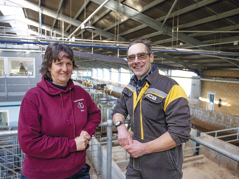 DAIRY FOCUS: Hann Farming, Rodden Down Farm, Frome