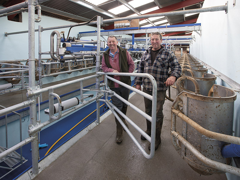 DAIRY FOCUS: K J Osborne & Partners, Whitchurch Farm, Ston Easton