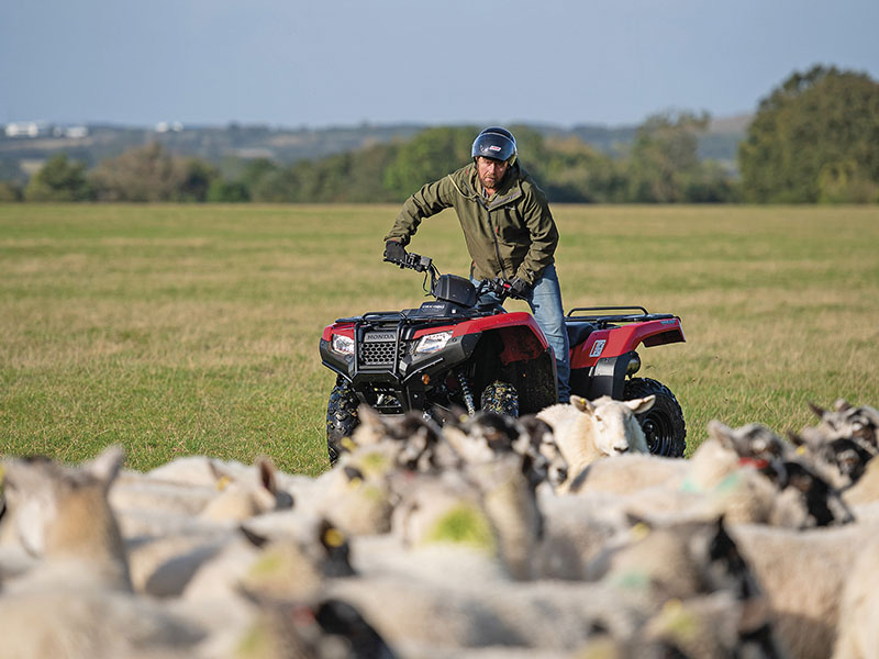 PREPARE FOR THE LAMBING SEASON WITH ATVs, UTVs AND TRAILERS