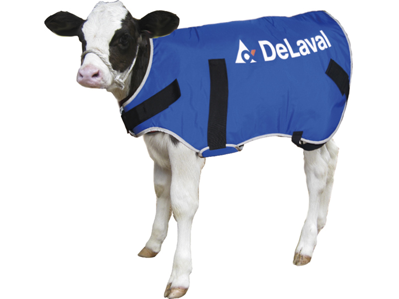 DeLAVAL DAIRY PRODUCTS ON OFFER