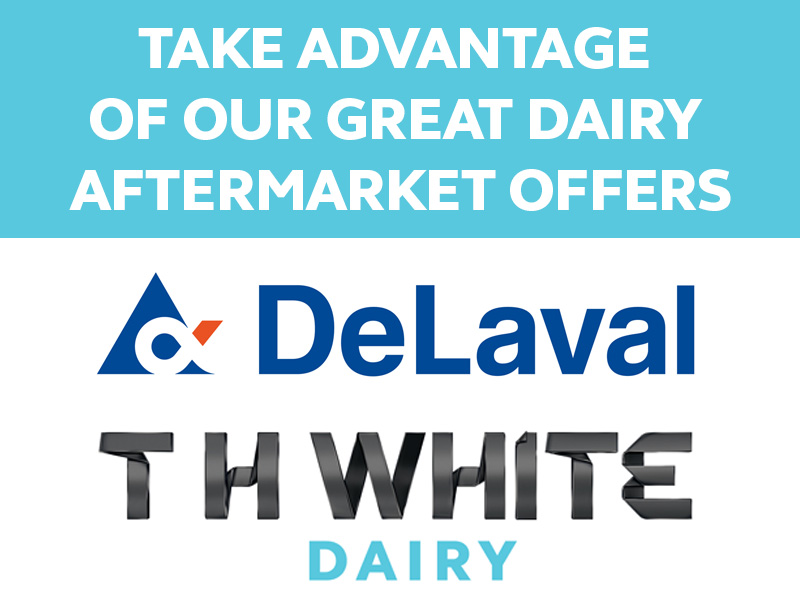 GREAT DAIRY OFFERS