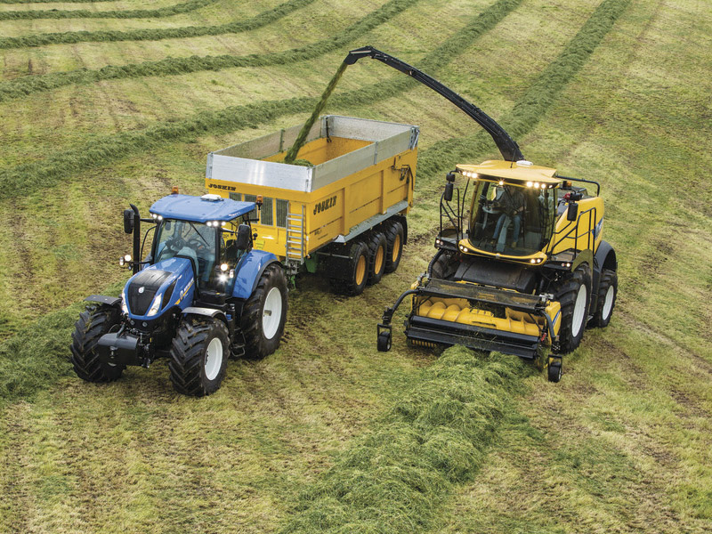 THROUGHPUT IS KING FOR FORAGE