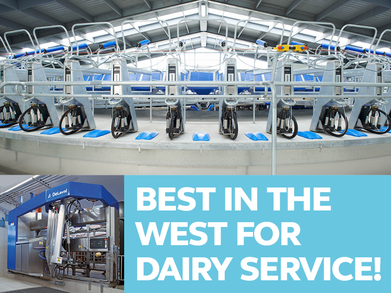 Best in the West for dairy service
