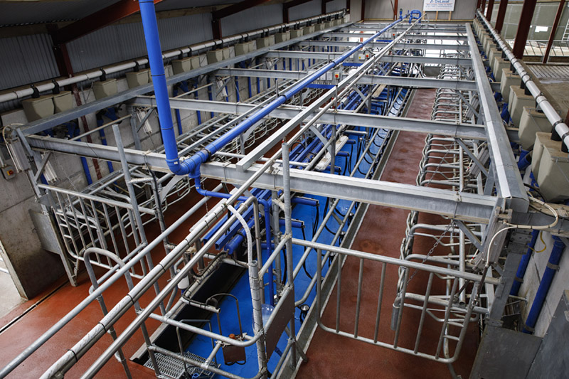 New P100 parallel parlour system from DeLaval